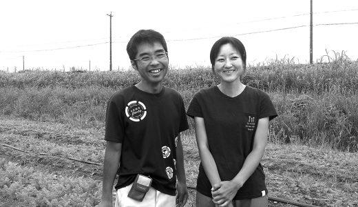 """無農薬・無肥料で """"奇跡のイチゴ""""に 挑戦する 野中慎吾さん"""