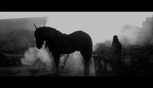 【寄稿】馬の瞳の奥に無限の自然を見た。―映画「馬ありて」について―(映画監督・笹谷遼平さん)